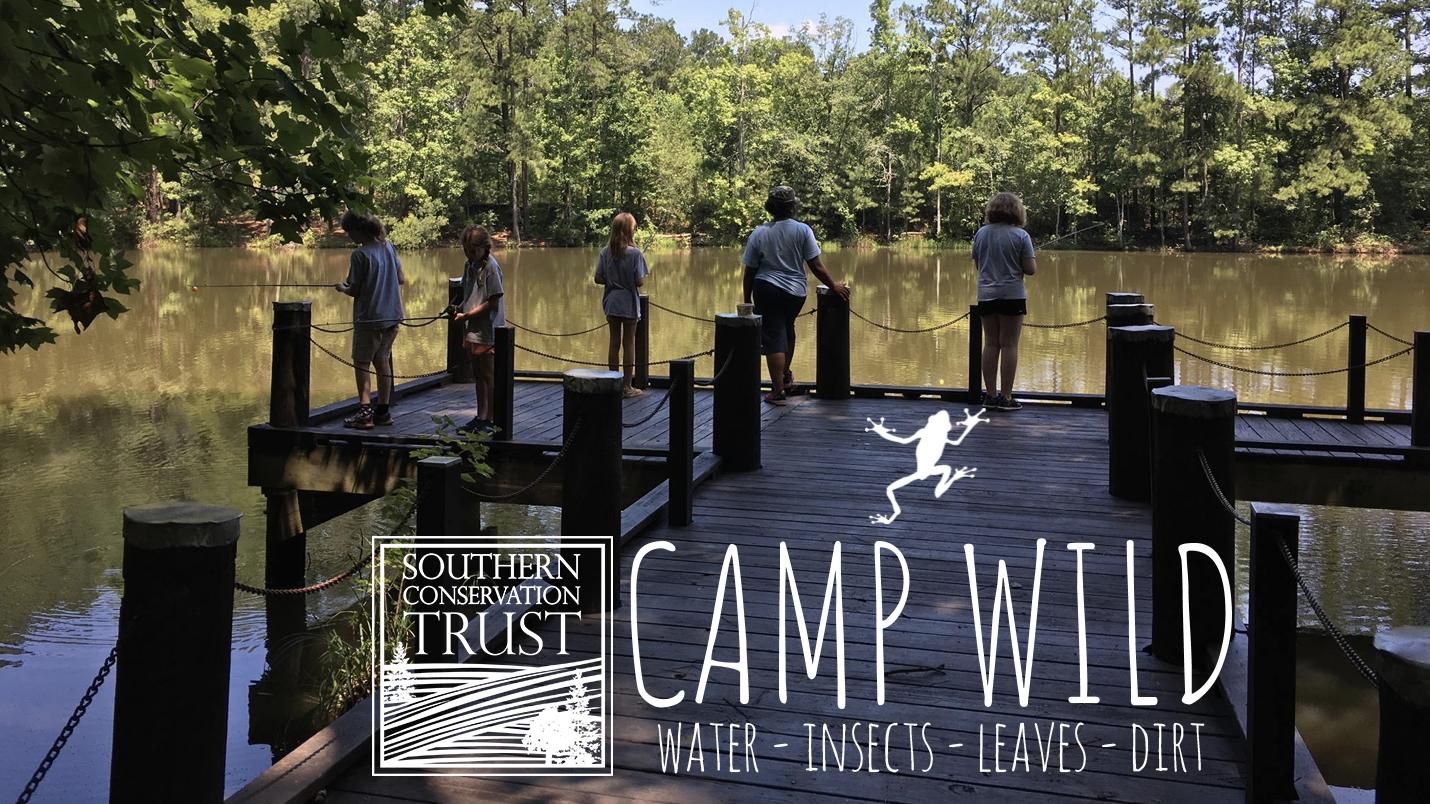 Camp WILD Week 1 @ Line Creek Nature Area