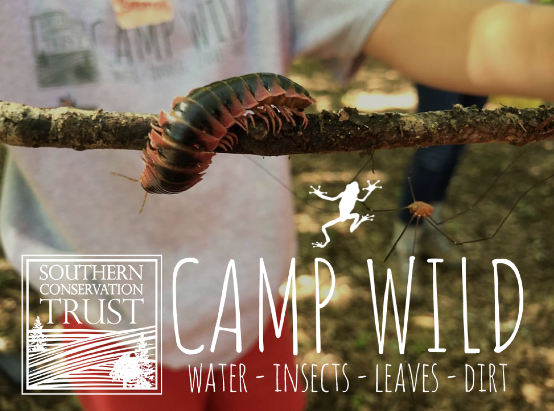 Camp WILD Week 2 @ Southern Conservation Trust