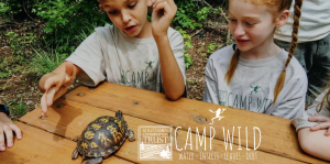 Camp WILD Session 4